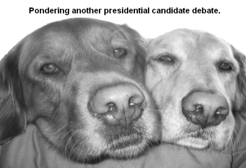 080217-pondering-the-presidential-candidates-debate.jpg