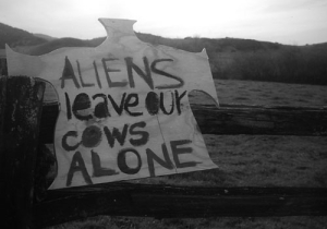 leave-our-cows-alone-bw