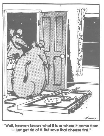 Far Side - Cheese