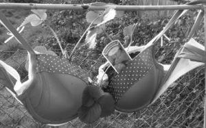 'Hanging bra-sket'